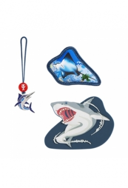 Magic Mags, Angry Shark, Step by Step